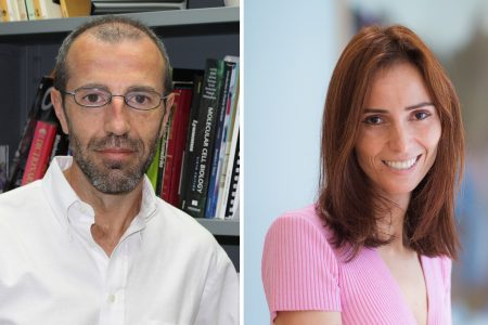 Antoni Barrientos and Silvi Rouskin awarded CZI funding to tackle questions regarding mitochondrial encephalomyopathies